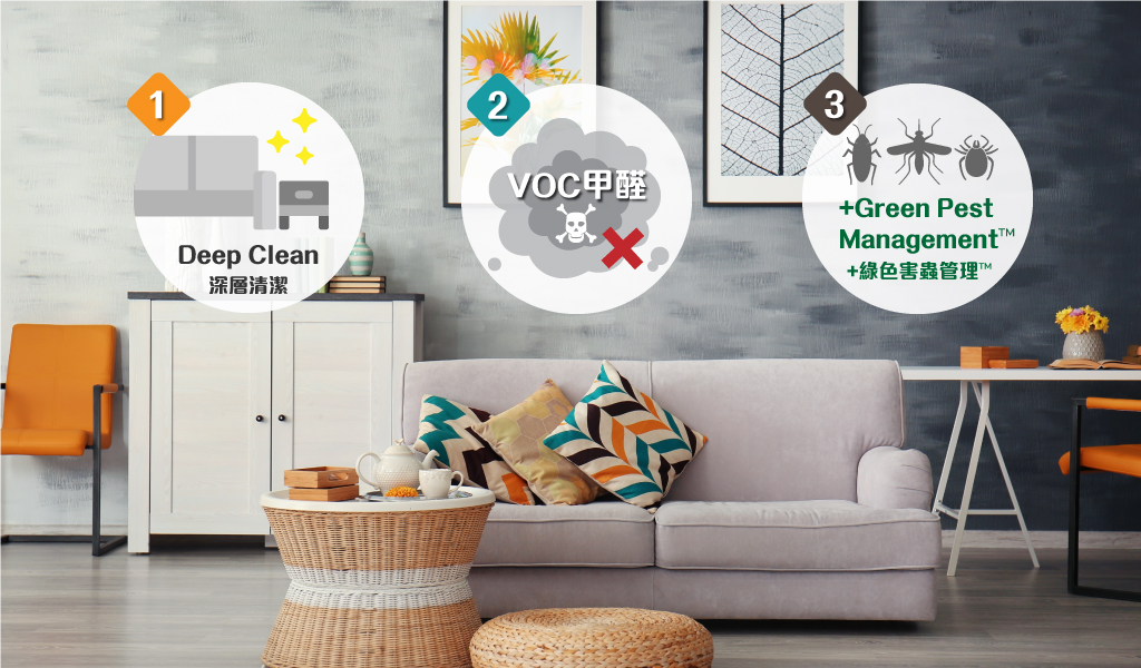 Johnson Group Entire Home & Office Deep Cleaning & Sanitizing