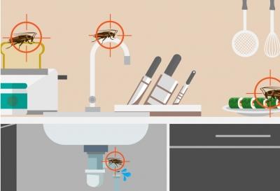 Johnson Group Cockroach Control: SafePRO® Cockroach Bait Gel